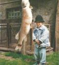 Hecht 29 kg 1990