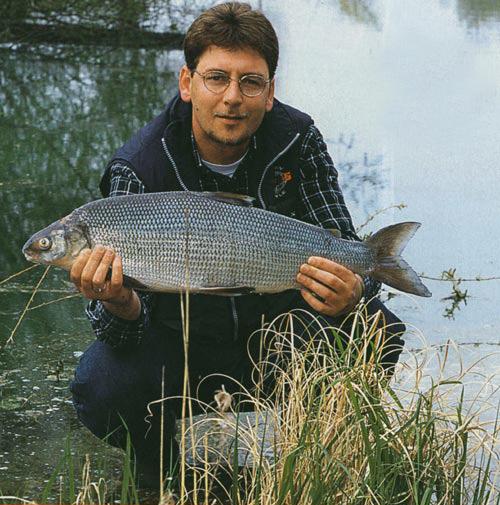 Maräne 5,25 kg 2002