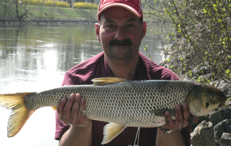Perlfisch 4,98 kg 2011