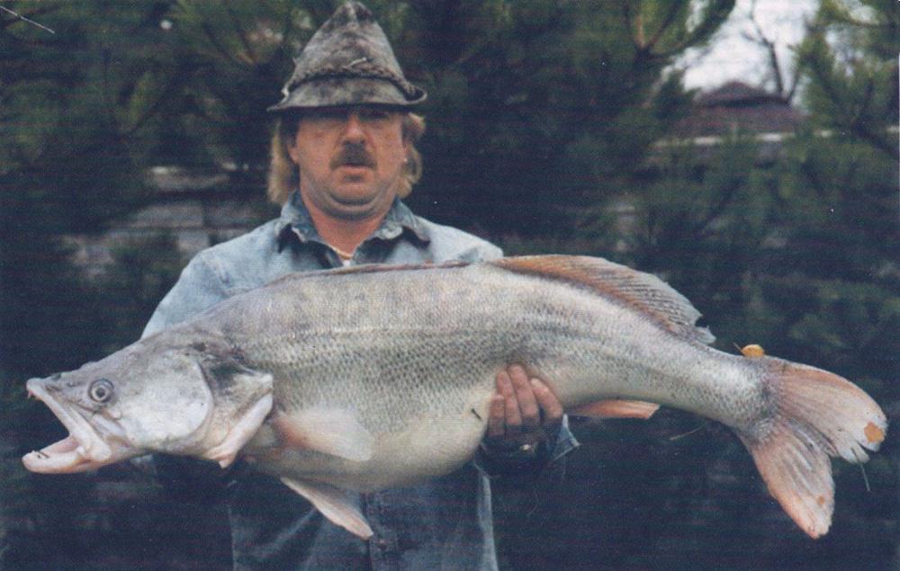 Zander 18,7 kg 1990