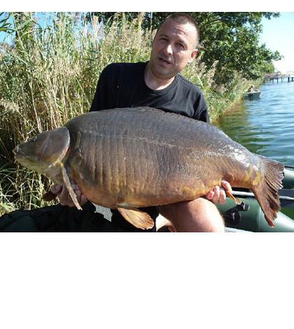 Karpfen_33,5kg Diashow