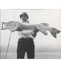 Hecht 23,2 kg 1976 Diashow