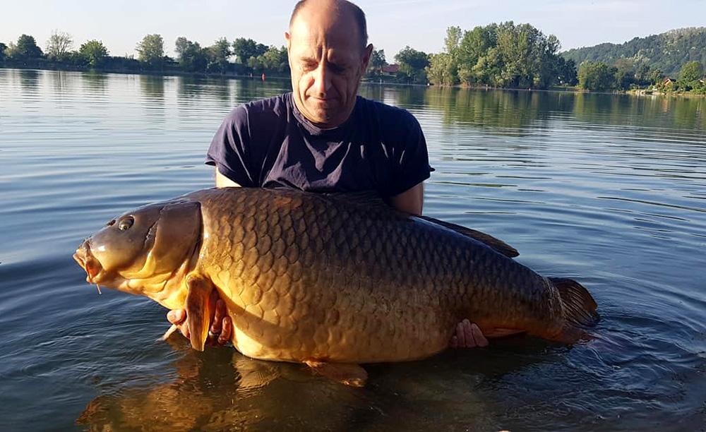 Karpfen 39,5 kg 2019