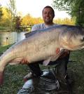 Marmorkarpfen 54,7 kg 2017
