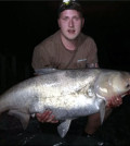 Silberamur 32,45 kg 2014
