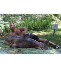 Marmorkarpfen_65 kg Diashow