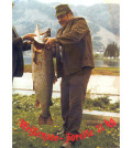 Seeforelle 20,85 kg 1974 Diashow