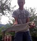 Perlfisch 6,57 kg 2015