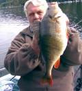 Barsch über 2,8 kg 2008